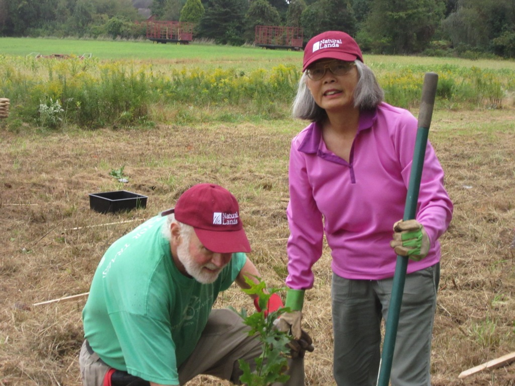 man and woman participate in tree planting