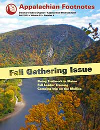 Footnotes Fall 2013
