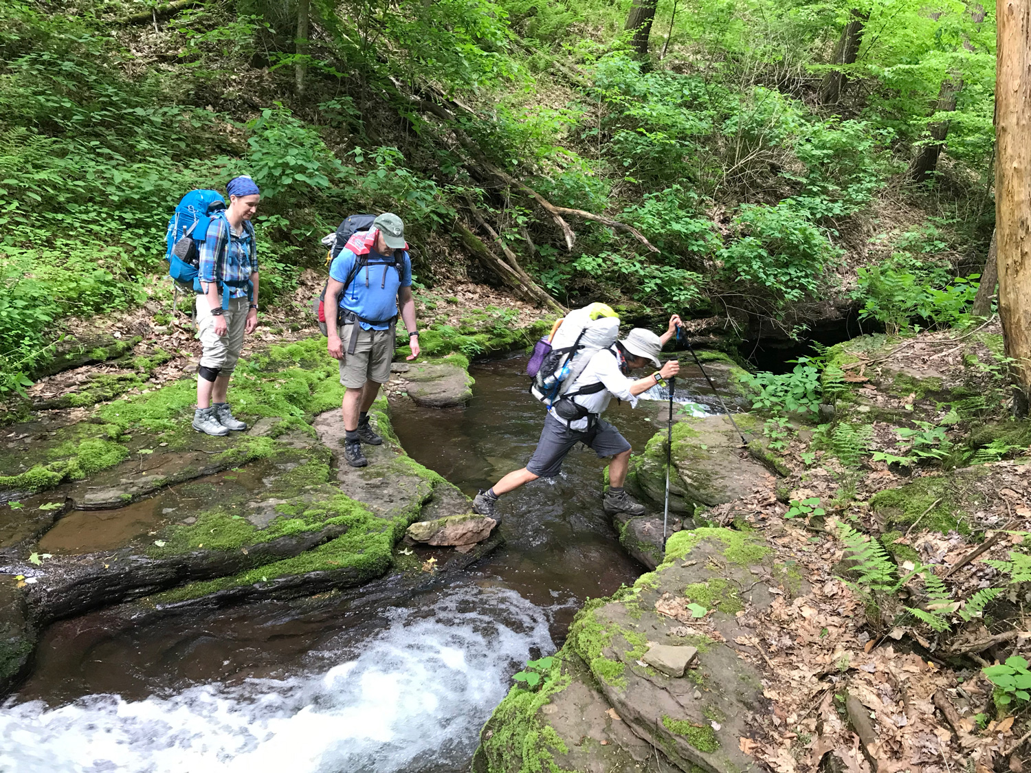 three-backpackers-black-forest-trail-small